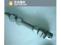 防盗螺栓(Anti-theft bolt)