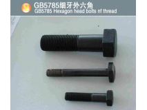GB5785细牙外六角(GB5785 Hexagon head bolts nf thread)
